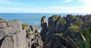 Great Coast Road – Von Westport nach Greymouth